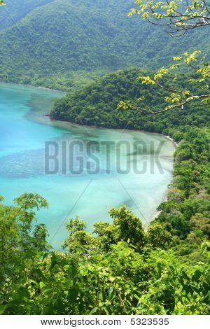 Jungle Lagoon