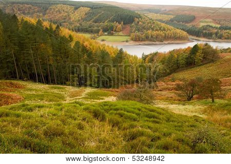View Across To Derwent Valley