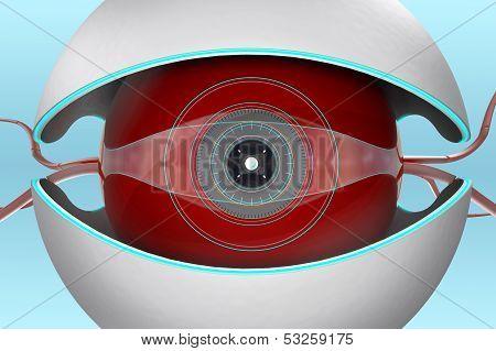 Camera Bot