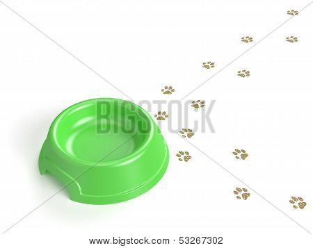 Cat's Bowl
