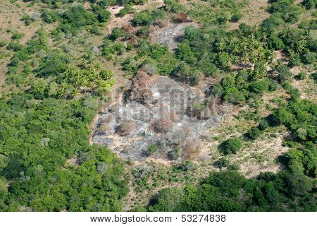 Slash-and-burn agricultural practice - cutting and burning of forests to create fields, Mozambique, southern Africa