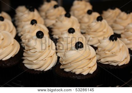 Cupcakes with Swirled Frosting