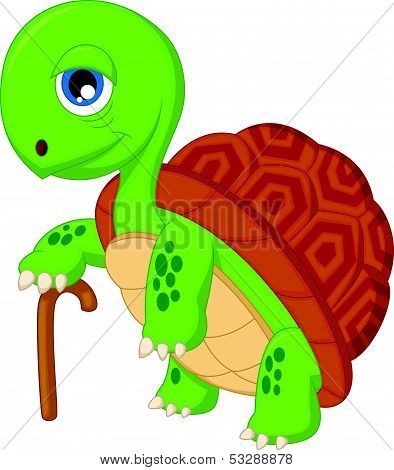 Elderly tortoise cartoon