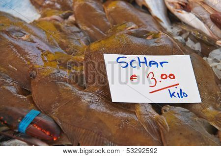 Sales Of Fresh Flounder On The Market