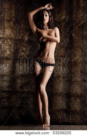 elegant fashionable woman on tigrine background