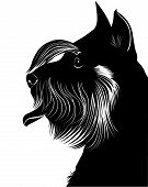 picture of schnauzer  - miniature schnauzer dog silhouette illustration animal drawing - JPG