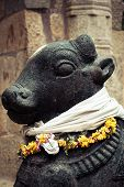 stock photo of trichy  - Statue of Nandi Bull at Gangaikonda Cholapuram Temple - JPG