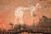 Aboriginal rock art (Kangaroo) at Nourlangie, Kakadu National Park, Northern Territory, Australia