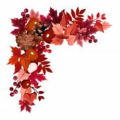 image of rowan berry  - Vector corner frame with autumn leaves - JPG