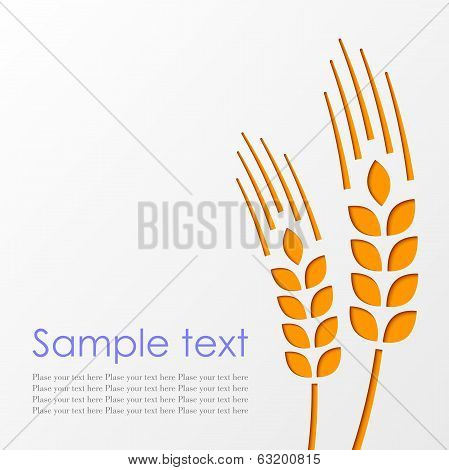 Wheat Background Eps10