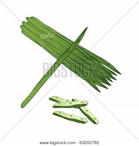 Moringa Oleifera Fruit And Leaves On White Background
