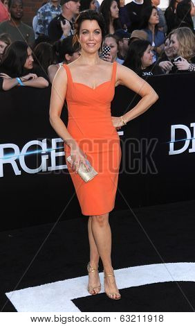 LOS ANGELES - MAR 18:  Bellamy Young arrives to the 'Divergent' Los Angeles Premiere  on March 18, 2014 in Westwood, CA