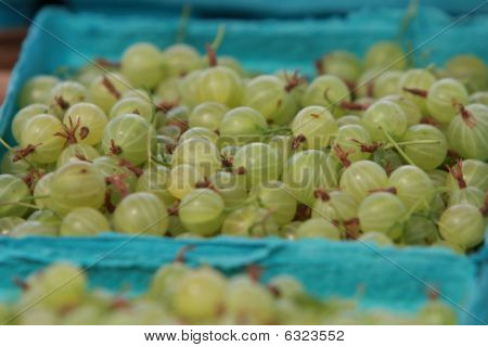 Basket of Gooseberries