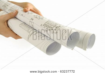 roll of paper in hand