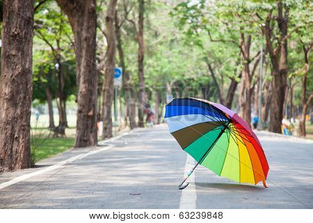 Multicolored Umbrella Resting On The Pavement.