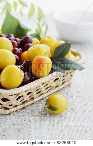 yellow plums in a basket