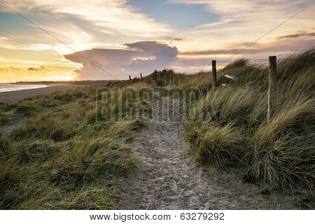 Blue Sky Summer Beach Sunset Landscape
