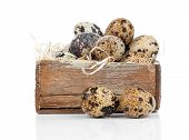foto of quail  - quail eggs isolated on a white background - JPG