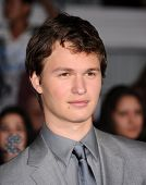 LOS ANGELES - MAR 18:  Ansel Elgort arrives to the 'Divergent' Los Angeles Premiere  on March 18, 20