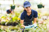 beautiful young nursery worker gardening in greenhouse