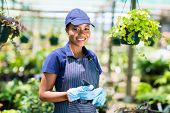pretty african american female gardener in greenhouse