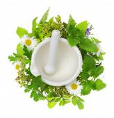 stock photo of pestle  - White porcelain mortar and pestle with fresh herbs around it - JPG
