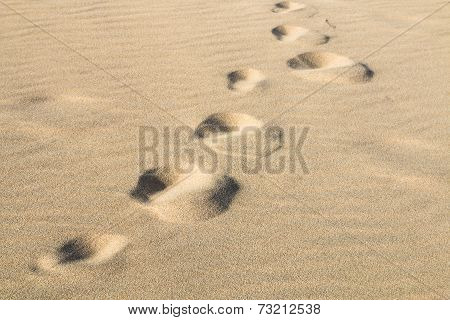 Footprints In The Sand, Fuerteventura