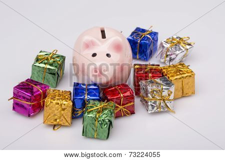 Pig Money Box Between Christmas Gift