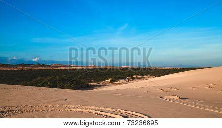 Dunes in Vietnam