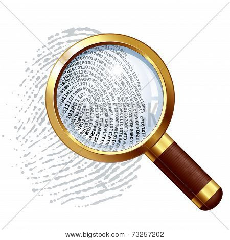 Thumbprint examination