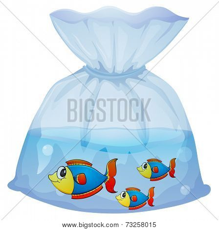 Illustration of a plastic pouch with three fishes on a white background