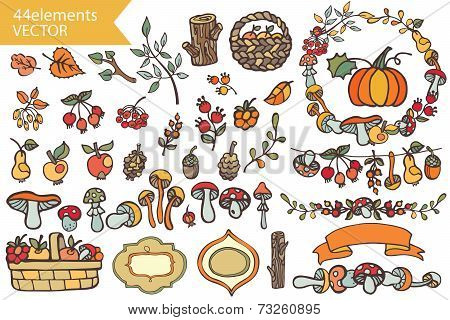 Autumn Harvest.Doodle berries,mushrooms,fruits,decor set