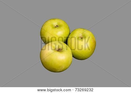 Three Granny Smith Apples On Grey Background