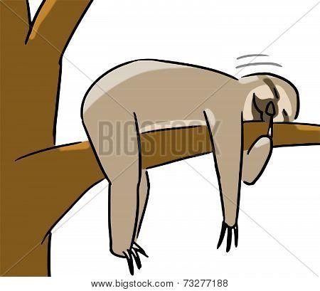 cartoon animal emotion sloth sleep