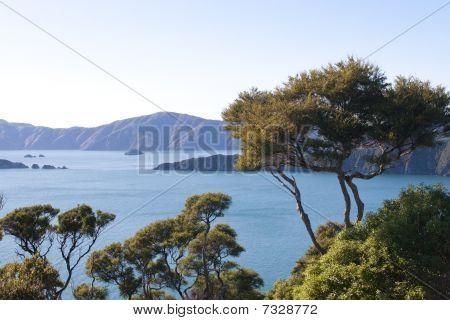 Marlborough Sounds In New Zealand