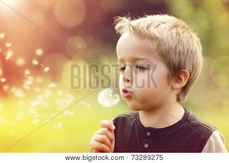 Child blowing dandelion in a meadow at sunset