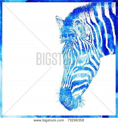 watercolor animal background in a blue color, head of zebra, vec