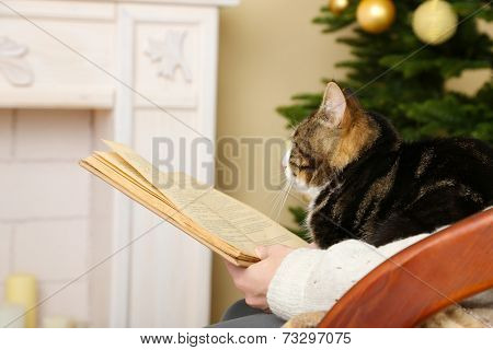 Woman and cute cat sitting on rocking chair and read the book in the front of the fireplace