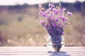 stock photo of vase flowers  - Beautiful wild flowers in vase in field - JPG