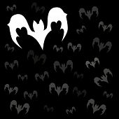 foto of vampire bat  - Set of vector black vampire bats for Halloween on dark - JPG