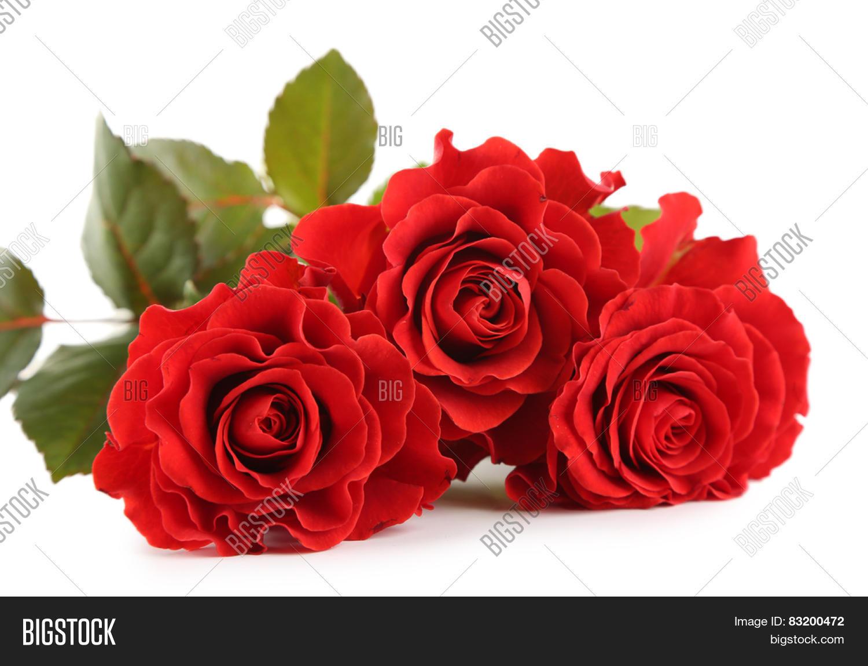 Bouquet Wonderful Red Roses Image & Photo | Bigstock