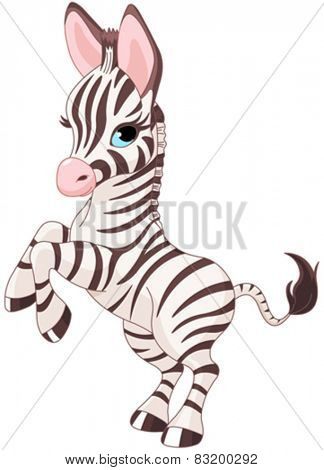 Illustration of very cute baby zebra