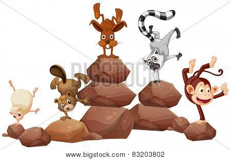 Illustration of animals handstanding on the rocks