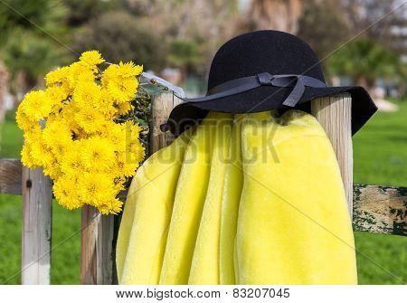 detail of yellow fur