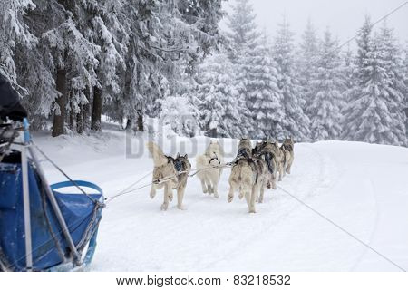 BELIS, ROMANIA - FEBRUARY 7: Unidentified competitor during the Second edition of