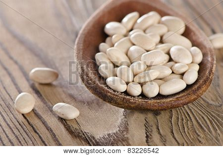 White Beans In A Old Wooden Spoon.