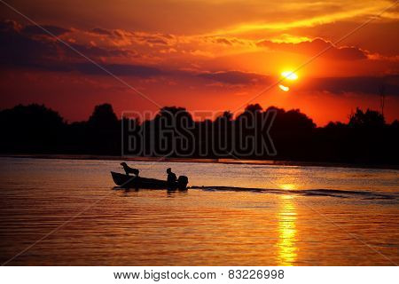 Man And Dog In Aboat