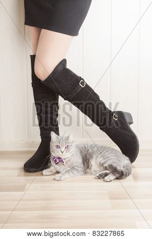 legs in boots made of suede and cat