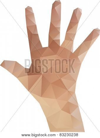 Vector Illustration of Low Poly Hand
