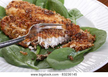 Catfish filets